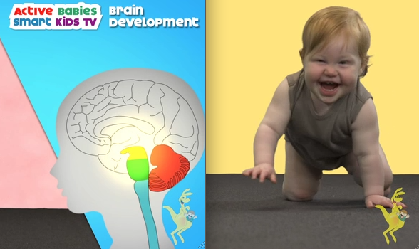 Baby crawling with brain development image.GymbaROO BabyROO